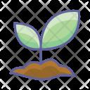 Planting Nature Plant Icon