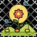 Plant Propagation Growth Icon