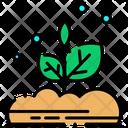 Plants Plant Leafs Icon