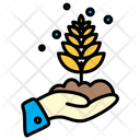 Plant Agricultural Wheat Icon