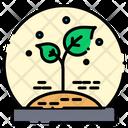 Plant Leafs Plants Icon