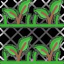 Planting Aresv Planting Area Crop Icon