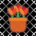 Plants Plant Growth Icon