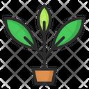 Planet Environment Ecology Icon