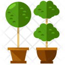 Plants Pot Leaf Icon