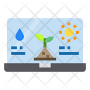 Laptop Plants Water Icon