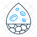 Platelets Cell Blood Icon