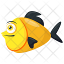 Platy Yellow Black Icon