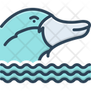 Platypus Nocturnal Burrowing Icon