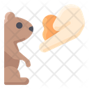 Play With Groundhog Icon