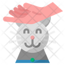 Playing With Pet Cat Pet Icon