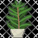 Pleurisy Root Icon