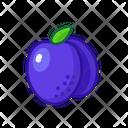 Plum Fruits Fruite Icon