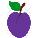 Plum Greengage Drupe Icon