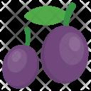 Plum Purple Fruit Icon