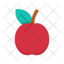 Plum Food Fruit Icon