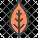 Plum Leaf Nature Icon