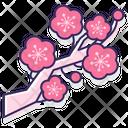 Plum Blossom Icon