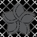 Plumeria Floral Flower Icon
