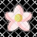Plumeria Blossom Garden Icon