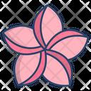 Plumeria Flower Flowers Icon