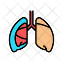 Pneumothorax Lungs Lungs Cancer Icon