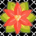 Poinsettia Flower Decoration Icon