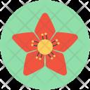Poinsettia Flower Christmas Icon