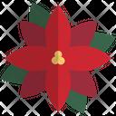 Poinsettia Christmas Xmas Icon