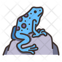 Poison Dart Frogs Poison Dart Frog Frog Icon