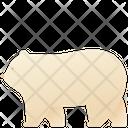 Zoo Animal Polar Icon
