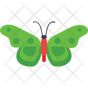 Polka Dots Insect Icon