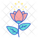 Pollen Folwer Rose Icon