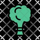 Tree Green Eco Icon