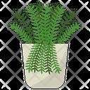 Polypodium Potted Plant Icon