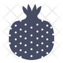 Pomegranate Pome Fruit Icon