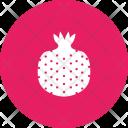 Pomegranate Pome Fruit Icon