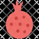 Pomegranate Fruit Spherical Icon