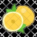 Pomelo Icon