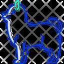 Pomeranian Wild Dog Dog Icon