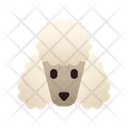 Poodle Dog Puppy Icon