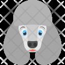 Poodle Face Dog Icon