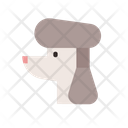 Poodle Curly Gromming Icon