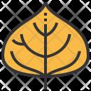 Poplar Leaf Greenery Icon