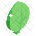 Poplar Leaf Icon