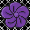 Poppy Blossom Botany Icon