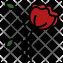 Poppy Flower Memorial Day Icon