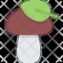 Porcini Mushroom Nature Icon