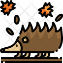 Porcupine Animal Hedgehog Icon