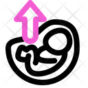 Position Up Icon